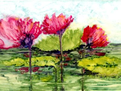 Lily Pond Flowers