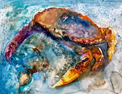 Crabbing Around